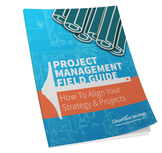 The Project Management Field Guid